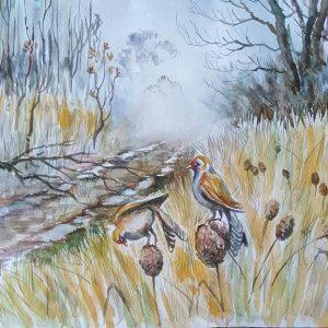 Online, Art, Art Gallery, Online Art Galley, Sri Lanka, Karunagama, Watercolor, Water Colour, Birds of Sri lanka, Marshy lands, Sri lanka forests, Forest paintings